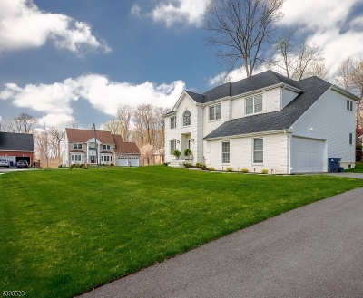 North Brunswick Twp. Single Family Home For Sale: 14 Rupprecht Rd