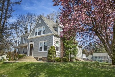 Florham Park Boro Single Family Home For Sale: 100 Ridgedale Ave