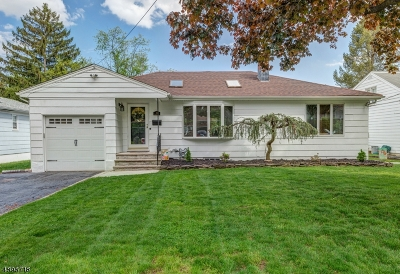 Springfield Single Family Home For Sale: 31 Cambridge Ter