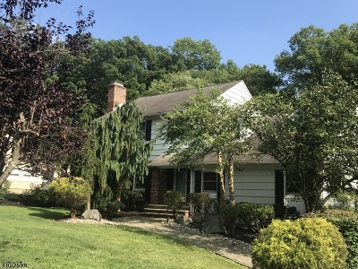 Scotch Plains Twp. Single Family Home For Sale: 2682 Sky Top Dr