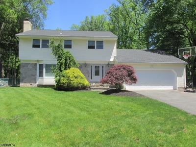 Edison Twp. Single Family Home For Sale: 15 Renee Ct