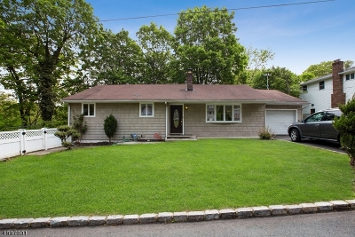 Edison Twp. Single Family Home For Sale: 27 Jersey Ave