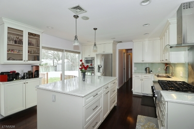Florham Park Boro Single Family Home For Sale: 90 Cathedral Ave