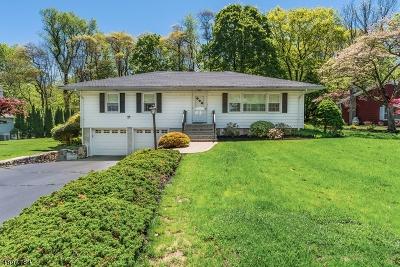 Randolph Twp. Single Family Home For Sale: 8 La Malfa Rd