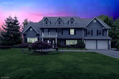 CLARK Single Family Home For Sale: 3 Avon Rd