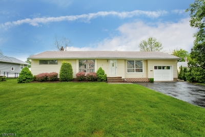 Parsippany-Troy Hills Twp. Single Family Home For Sale: 47 Greenhill Rd