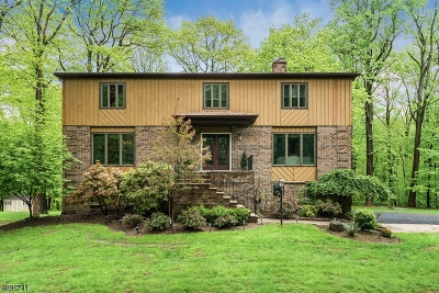 Randolph Twp. Single Family Home For Sale: 15 Black Birch Dr
