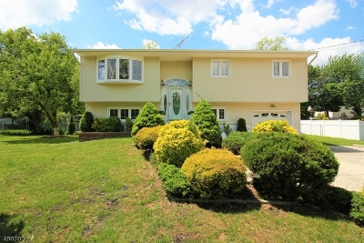 East Brunswick Twp. Single Family Home For Sale: 127 Joseph St