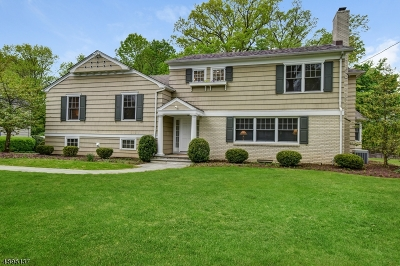 Millburn Twp. Single Family Home For Sale: 167 Tennyson Dr