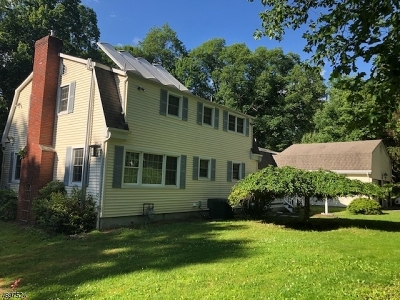 Randolph Twp. Single Family Home For Sale: 7 Jodilee Ln