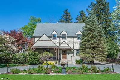 Morristown Town Single Family Home For Sale: 60 Washington Ave