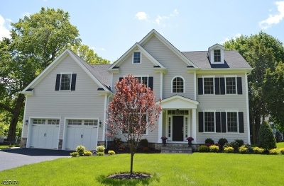 Florham Park Boro Single Family Home For Sale: 54 Edgewood Dr