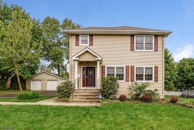 East Hanover Twp. Single Family Home For Sale: 11 Grant Ave