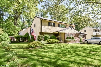 Fanwood Boro Single Family Home For Sale: 475 South Ave