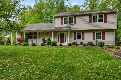 Morris Plains Boro Single Family Home For Sale: 3 Walsh Way