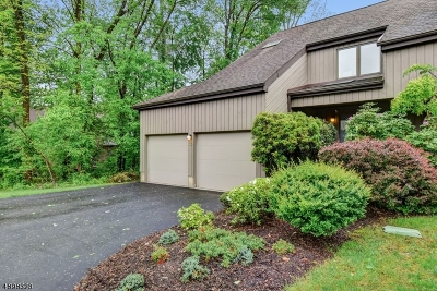 Morristown Town NJ Condo/Townhouse For Sale: $530,000