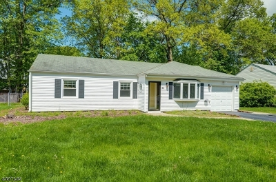 Livingston Twp. Single Family Home For Sale: 59 Elmwood Dr