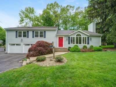 Florham Park Boro Single Family Home For Sale: 42 Afton Dr
