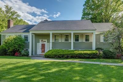 South Orange Village Twp. Single Family Home For Sale: 380 Hartford Road