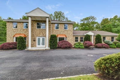 Florham Park Boro Single Family Home For Sale: 168 Brooklake Rd