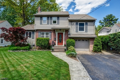 Springfield Twp. Single Family Home For Sale: 12 Sherwood Rd