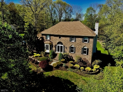 Randolph Twp. Single Family Home For Sale: 20 Prince Henry Dr