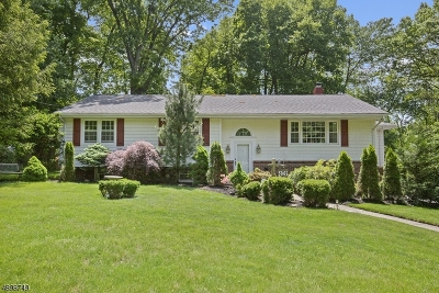 CLARK Single Family Home For Sale: 96 Amelia Dr