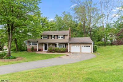 Randolph Twp. Single Family Home For Sale: 6 Country Lane