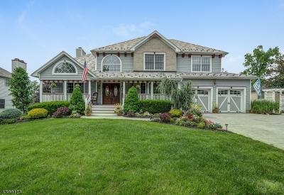 East Hanover Twp. Single Family Home For Sale: 9 Alexandria Dr