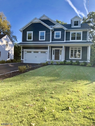 WESTFIELD Single Family Home For Sale: 110 Dickson Dr