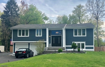 Edison Twp. Single Family Home For Sale: 24 Mary Ellen Dr