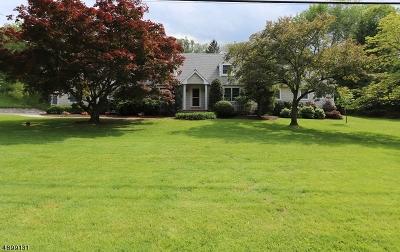 Denville Twp. Single Family Home For Sale: 146 Casterline Rd