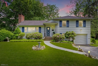 Florham Park Boro Single Family Home For Sale: 54 Brooklake Rd