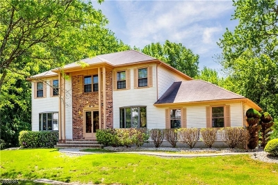 OLD BRIDGE Single Family Home For Sale: 3 Warne Rd