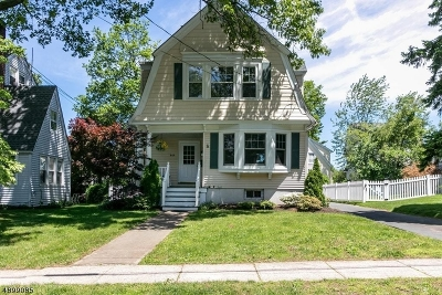 WESTFIELD Single Family Home For Sale: 949 Ripley Ave