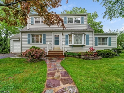 Cranford Twp. Single Family Home For Sale: 719 Walnut Ave