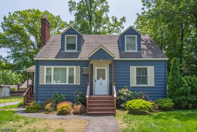 Parsippany-Troy Hills Twp. Single Family Home For Sale: 103 Iroquois Ave
