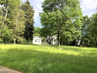 Livingston Twp. Single Family Home For Sale: 159 Walnut St