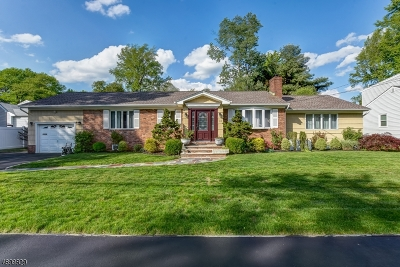 Springfield Twp. Single Family Home For Sale: 114 Edgewood Ave