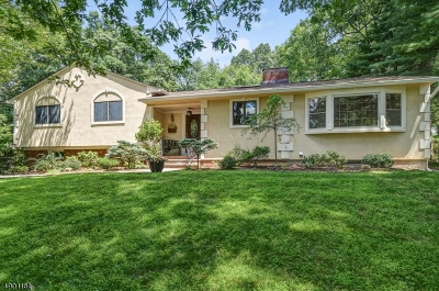 Livingston Twp. Single Family Home For Sale: 45 Hickory Pl