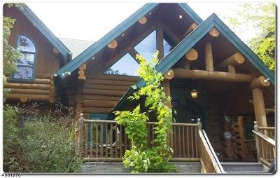 Denville Twp. Single Family Home For Sale: 11 Little Bear Rd