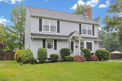 Scotch Plains Twp. Single Family Home For Sale: 4 Fieldcrest Dr