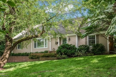 Summit City Single Family Home For Sale: 8 Carleen Ct