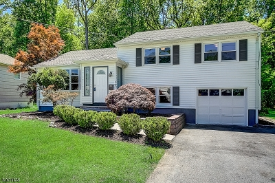 Livingston Twp. Single Family Home For Sale: 17 W Mc Clellan Ave