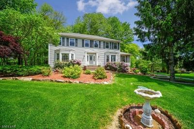 Randolph Twp. Single Family Home For Sale: 6 Nina Pl