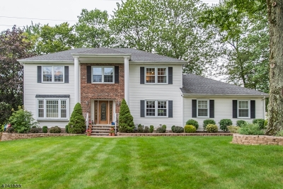 Randolph Twp. Single Family Home For Sale: 11 Prince Henry Dr