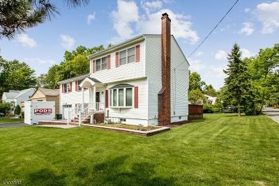 Livingston Twp. Single Family Home For Sale: 189 Grove Ter