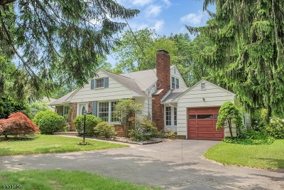 New Providence Boro Single Family Home For Sale: 323 Mountain Ave