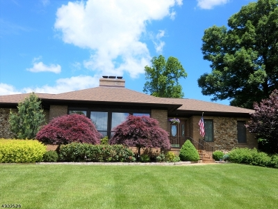 Woodbridge Twp. Single Family Home For Sale: 25 Runnymede Rd
