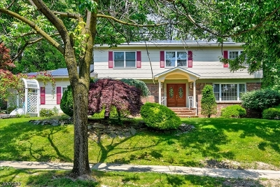 East Brunswick Twp. Single Family Home For Sale: 19 Thomas Rd